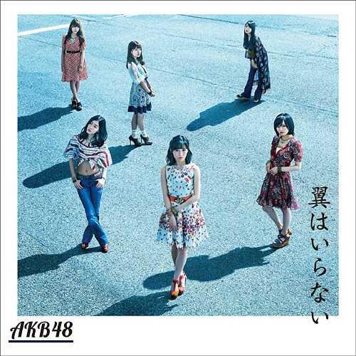AKB48 / 不需要翅膀〈Type-C〉CD+DVD