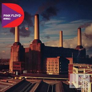 Pink Floyd / Animals