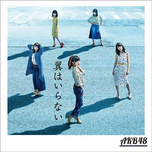 AKB48 / 不需要翅膀〈Type-B〉CD+DVD