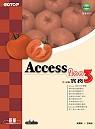 Access 2003中文版實務