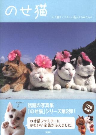 日本籃子貓超可愛逗趣造型寫真秀 貓 貓新入